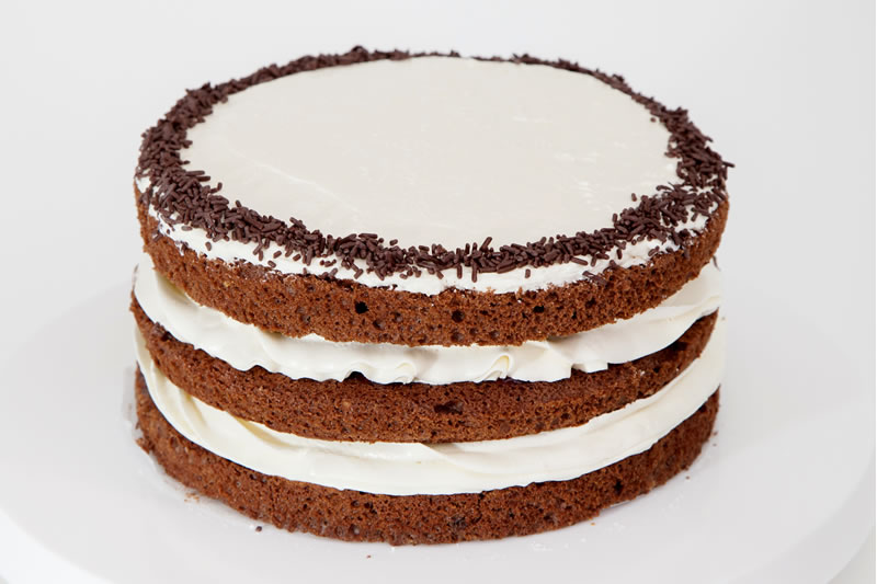 Photo1: Chocolate Sponge (1)