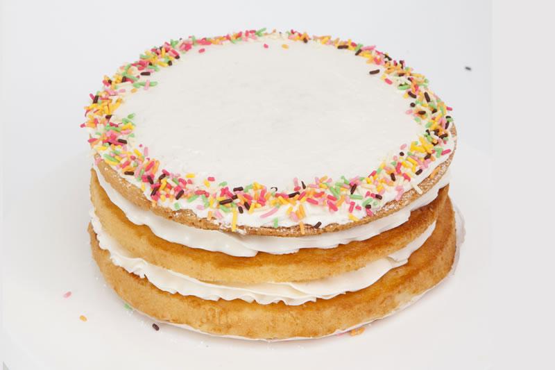 Photo1: Vanilla Sponge (1)