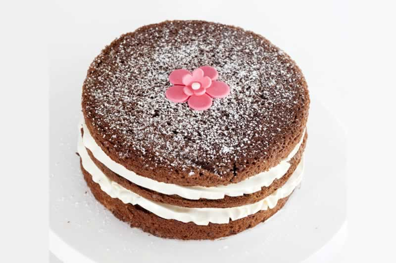 Photo1: Dusted Chocolate sponge (1)